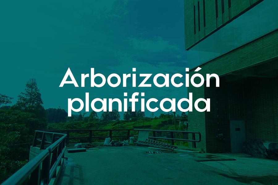 Arborización-planificada