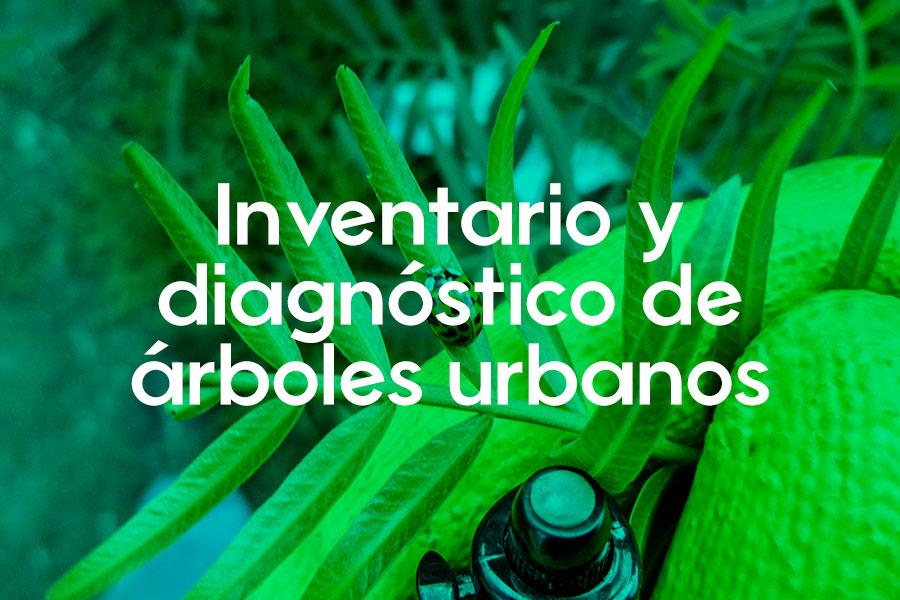 Inventario-y-diagnóstico-de-árboles-urbanos