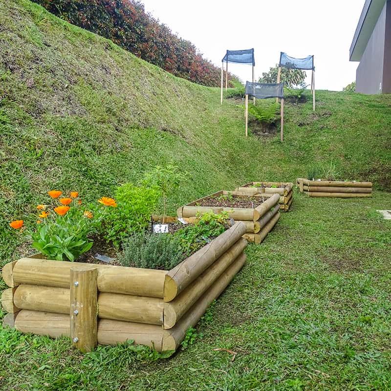 Paisajismo jardines un jardn no es rellenar de verde for La paisajista